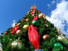 The Wordless Christmas Tree